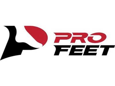 profleet logo